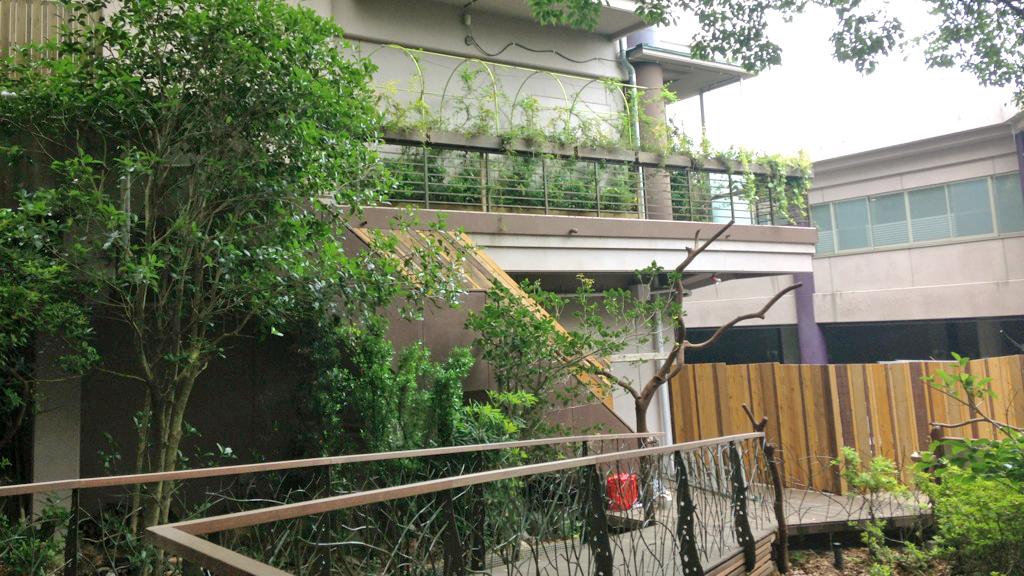 星野リゾート リゾナーレ KUSUKUSU 事例画像3