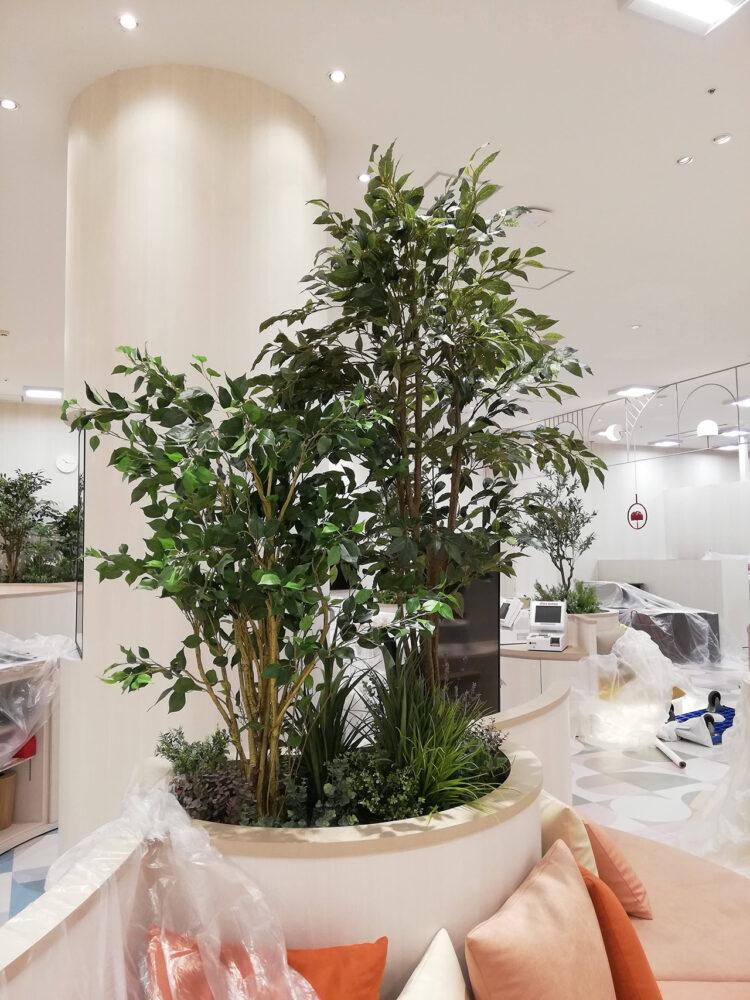 d garden ららぽーと豊洲店 事例画像3