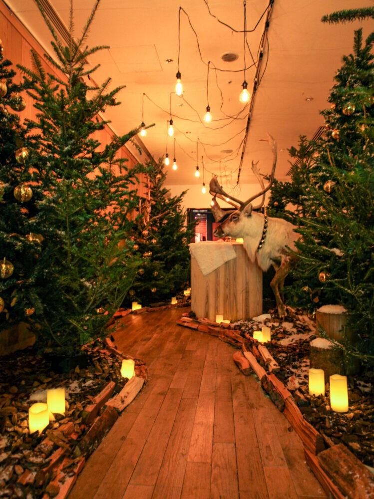 (marunouchi) HOUSE Christmas display 事例画像2