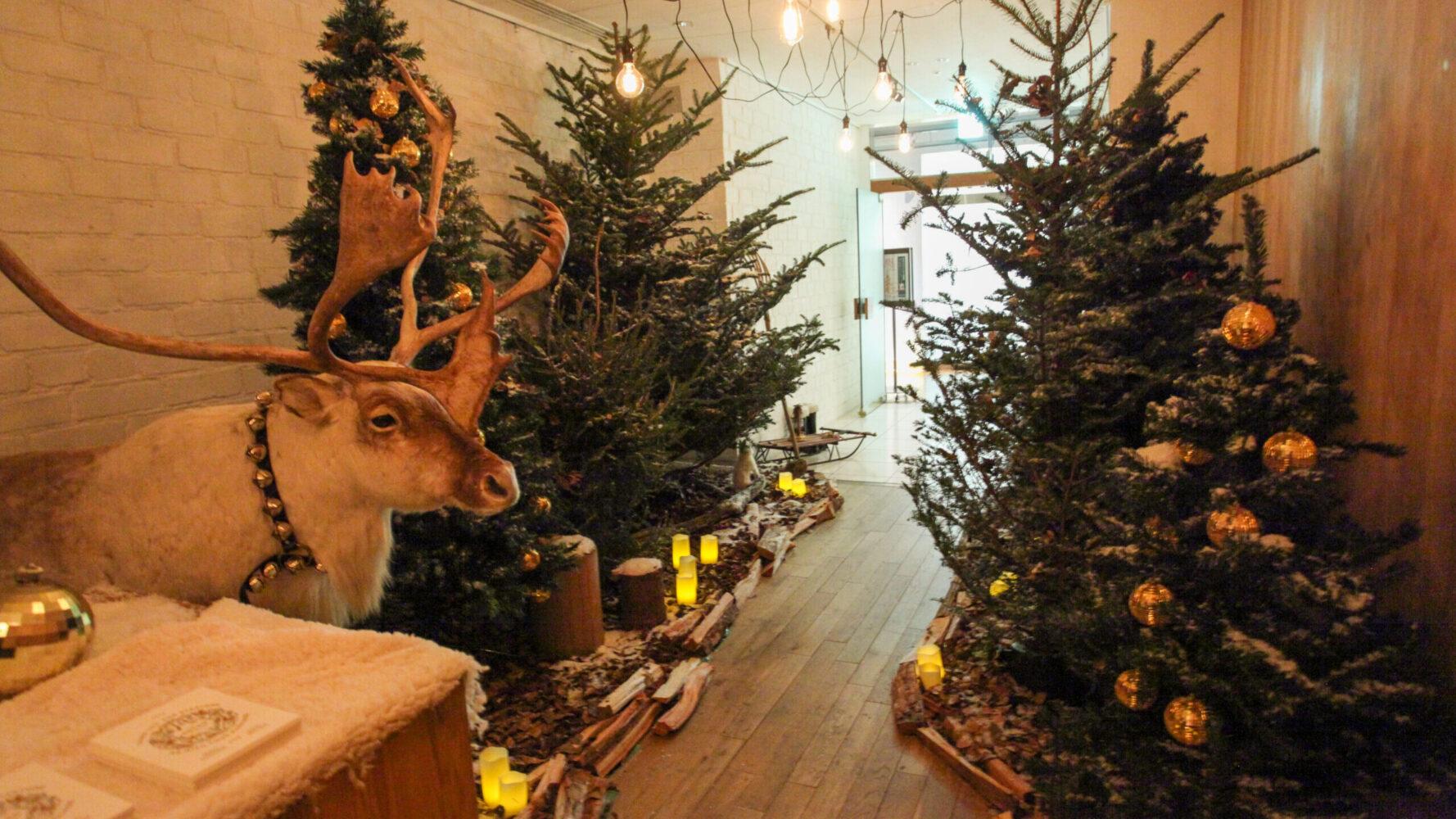 (marunouchi) HOUSE Christmas display 事例画像3
