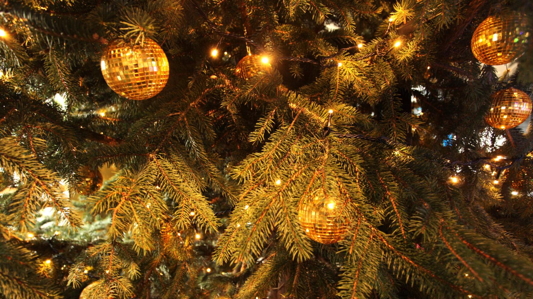 (marunouchi) HOUSE Christmas display 事例画像9