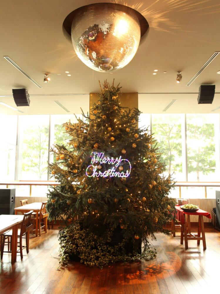 (marunouchi) HOUSE Christmas display 事例画像8