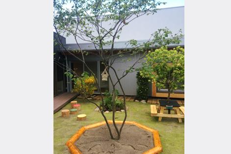 茨城保育園 事例画像2