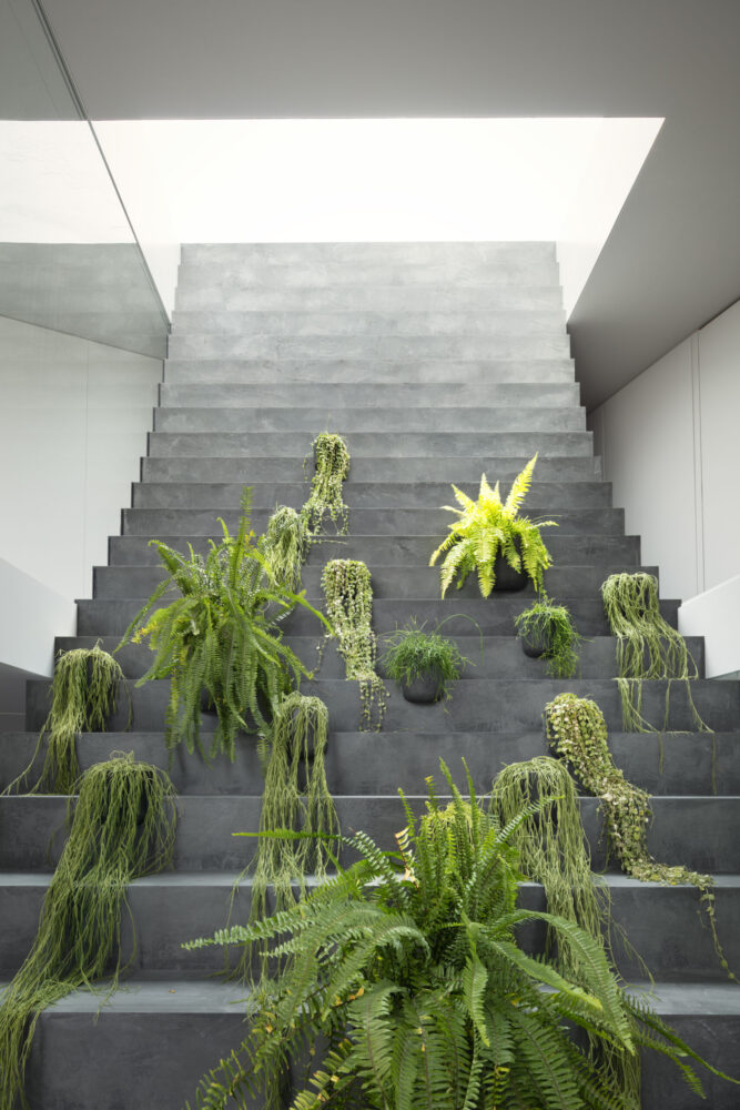 stairway house 事例画像